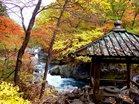秋の憾満ヶ淵