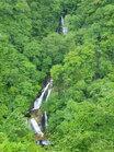 新緑の霧降の滝全景/撮影:玄梅様