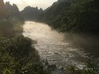 大谷川川霧