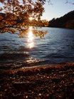 晩秋の湖畔夕陽