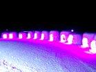 氷彫刻会場ライトアップ