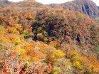 華厳渓谷の紅葉