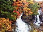 雨に光る龍頭の滝