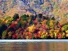 ※八丁出島の紅葉最盛