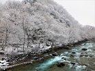 春雪と大谷川